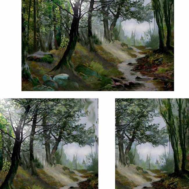 Photo of Forest Painting Composition